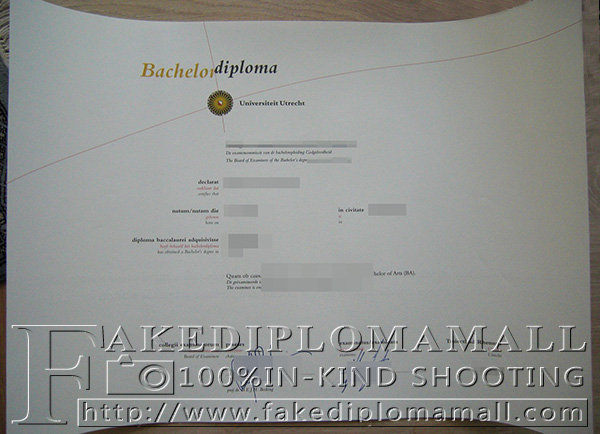 Utrecht University degree, Utrecht University diploma