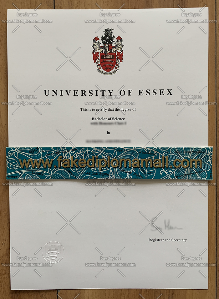 University of Essex degree